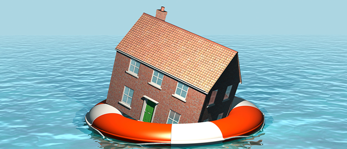 House floating in life preserver